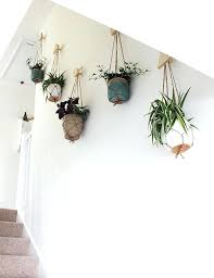 wall plant hangers wall of hanging planters growing spaces wall plant hanger diy wall mount plant