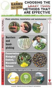 garden pest. Garden Pest Control Infographic L