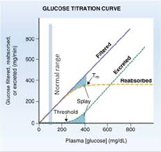 Splay Chart Splay Glucose Titration Curve Google Search Splay Reps