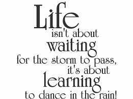 Cute Quotes About Life Beauteous Cute Quotes About Life