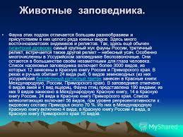 Презентация на тему Уссурийский заповедник Уссурийский  3 Животные заповедника
