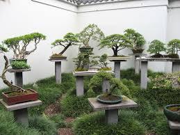 bonsai gardens. bonsai garden photo: img_2409.jpg gardens