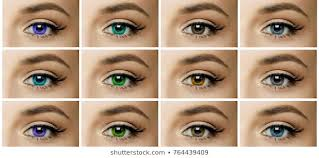 Royalty Free Eye Color Stock Images Photos Vectors