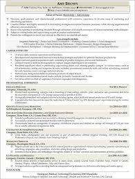 Marketing and Advertising Professional Marketing Professional Resume Example