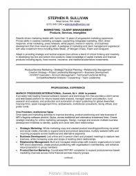 015 Business Plan Strategic Account Templates Sample Key
