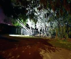 fairy garden plants home depot full size of solar garden lights outdoor fairy marvellous best spot