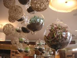 diy 6 succulents and 2 glass globes for terrarium projects hanging gardens create