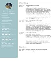 Web Application Developer Resume samples