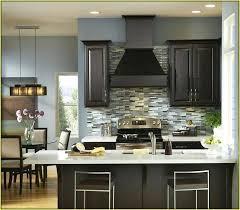 kitchen colours with dark cabinets kitchen kitchen color ideas with dark cabinets good looking wall oak