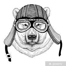 Fototapeta Vinylová Polární Medvěd Ručně Kreslený Obraz Zvíře Nosit Motocykl Helma Pro Tričko Tetování Znak Odznak Logo Patch