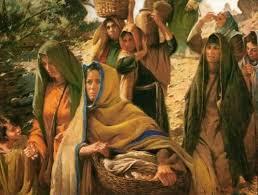 Resultado de imagem para Mulheres na genealogia de Jesus