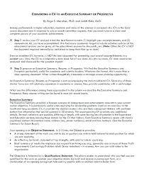 Sample Executive Summary Resume Example Of Executive Resume Sample