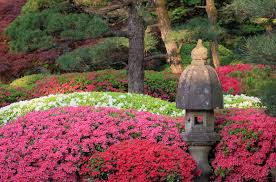 Japanese Garden Hours Admission Portland Japanese Garden