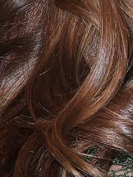 Miranda Kerr Hair Color Mocha Brown With Almond Highlights