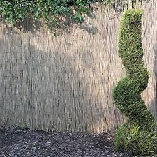 garden screen. REED SCREENING ROLLS 4M LONG 5 HEIGHTS AVAILABLE GARDEN SCREEN FENCE PANEL Garden Screen