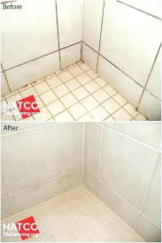clean mold in shower moldy shower curtain best cleaning moldy shower grout and caulk images on clean mold in shower