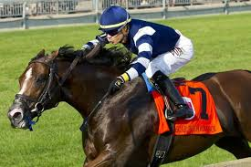 2014 Breeders Cup Charts Breeders Cup Mile Strong Euro Contingent Looks To End Drought