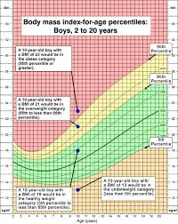 Is My Child Obese Chart About Child Teen Bmi Healthy Weight Cdc