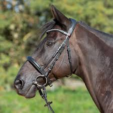 Kieffer Bridle Size Chart Kieffer Ultrasoft Sue Bridle Leather Browband