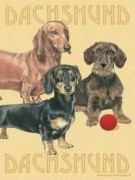 dachshund garden flag holiday flags dog crew house dachshund garden flag