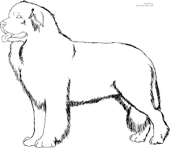 Dog And Cat Coloring Pages Printable Dog And Cat Coloring Pages