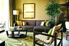 lime green and brown living room ideas modern minimalist home designbrown green living room image of
