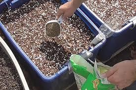 Fertilizer Application Rates Container Gardening Self