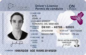 Out New 2013 ca Theifp Licences In Driver's