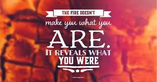 Fire Quotes Gorgeous 48 Fire Quotes And Funny Fire Quotes TheFreshQuotes