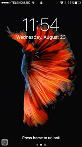 Live Fish Wallpapers with 3D Touch and ...
