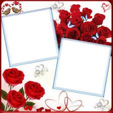 photo mone 2 photos rose fleur love