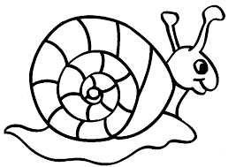 Small Picture Cute Snail Animal Coloring Pages For Kids fe6 Printable Snails