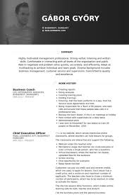 Business Coach Resume samples