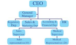 Organization Chart Pharma Share Sarl