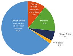 Causes Of Climate Change And Sea Level Rise Coastadapt