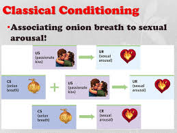Example Of Classical Conditioning Classical Conditioning Ppt Download
