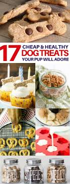 Country Kitchen Dog Treats 25 Best Ideas About Pet 1 On Pinterest Homemade Dog Puppy