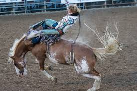 Official Site Of Cache County Utah Rodeo And Carnival Tickets