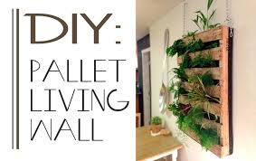 diy pallet living wall living walls or vertical gardens