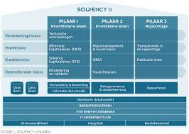 In control van datakwaliteit onder Solvency II - De IT-auditor