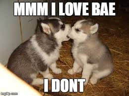 Cute Puppies Meme - Imgflip via Relatably.com