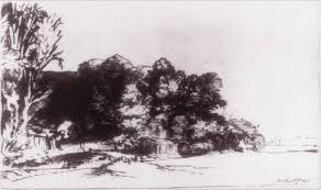 clump of trees a vista rembrandt van rijn work  clump of trees a vista