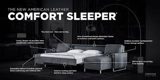 comfort sleeper from american leather