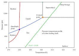 Co2 Phase Chart Co2 Phase Change Diagram Diagram Schematic Ideas