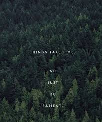 Waiting Quotes Beauteous 48 Beautiful And Wise Quotes About Patience With Images