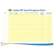 Chart Progress Junior Bp Award Progress Chart A3