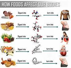 junk food vs healthy food. Delighful Food Junkfoodvshealthyfood1 And Junk Food Vs Healthy