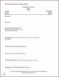 Resume Unique Performance Resume Template Performance Resume