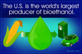 advantages and disadvantages of biofuel they never told you