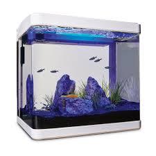wet dry filter freshwater 50 imagitarium freshwater cube aquarium kit